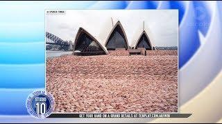 World Famous Nude Photographer Spencer Tunick's Latest Project | Studio 10
