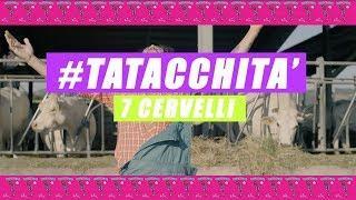 7Cervelli  - TATACCHITA' (Il Nero di Whatsapp)