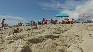 Ocean City Says Women Going Topless On Beach Is 'Unpalatable'
