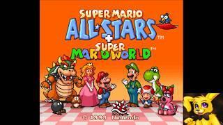 Super Short Super Mario fail