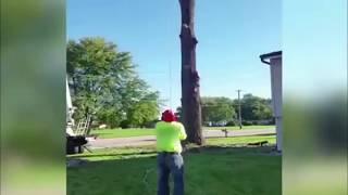Funny tree removal fail Shooting stars