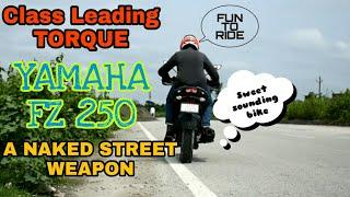 YAMAHA FZ 250 FIRST RIDE EXPERIENCE & OVERVIEW || A PERFECT NAKED STREET FIGHTER || ft AFTER RIDE