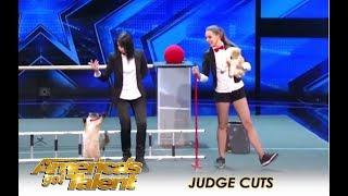 The Savitsky Cats: The Most TALENTED Cats You Won't Believe It! | America's Got Talent 2018