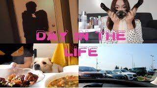 Day in the life college summer vacation#Sephora开箱 留学狗的daily vlog