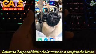 CATS Crash Arena Turbo Stars Hack ios apk - CATS Crash Arena Turbo Stars funny fails